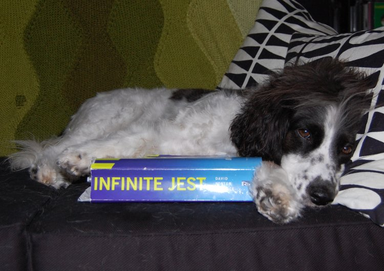 Rodney and Infinite Jest